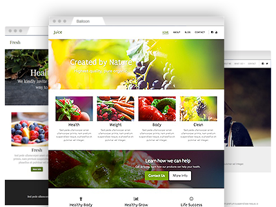 A selection of easy–to–redesign website themes